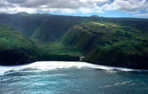 The Big Island of Hawaii is home to many sharks