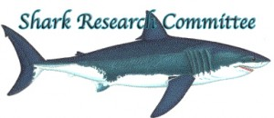 srclogo 300x130 Two Great White Shark Sightings in Ocean Beach