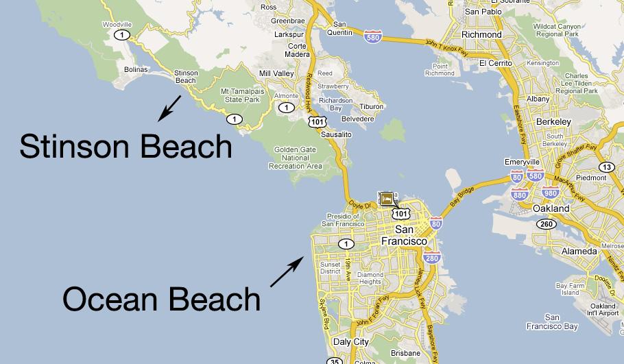 Two Great White Shark Sightings in Ocean Beach