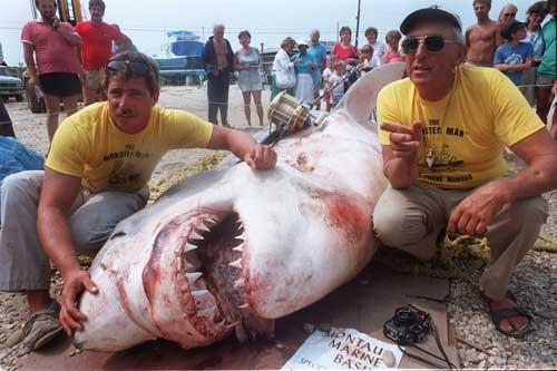 Shark hunter frank mundus 1926 2008 for Montauk shark fishing