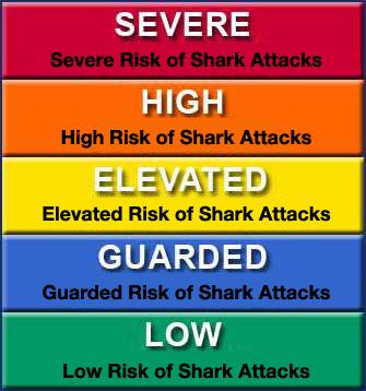 Shark Alert System
