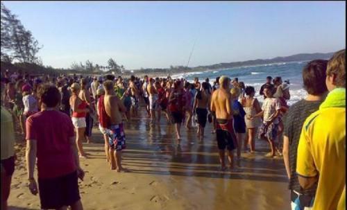 Ponta da Ouro Beach, Post-Shark Attack Chaos