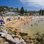 Avoca Beach Shark Attack