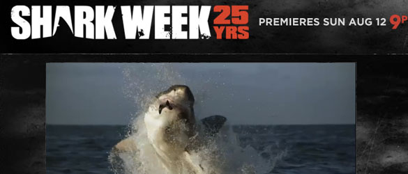 Shark Week  The Highly Anticipated Summer TV Event!