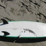 Surf Beach Shark Attacks Claim Another Life