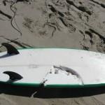 Surf Beach Shark Attack Surfboard